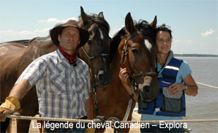La légende du cheval Canadien – Explora